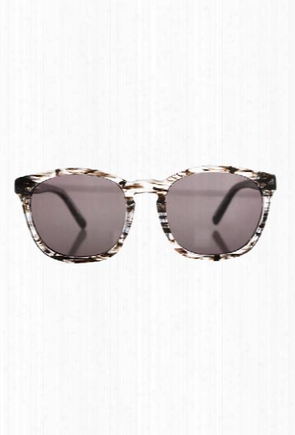 Alexander Wang Clear Black Tortoise Shell Sunglasses