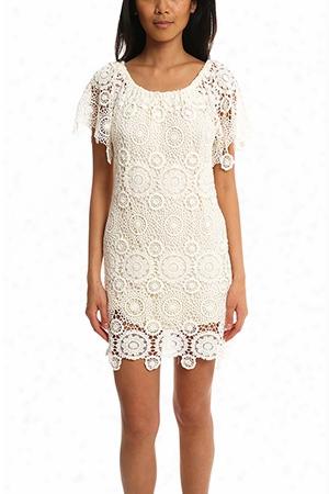 Nightcap Carmen Dress