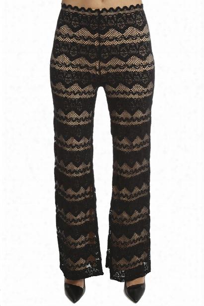 Nightcap Sierra Lace Trouser Pant