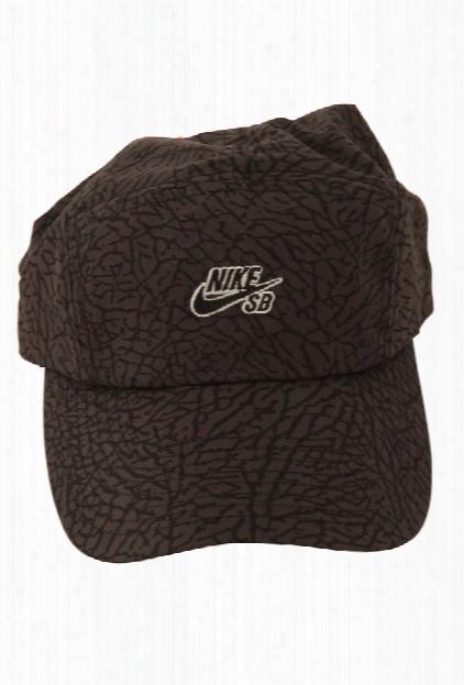 Nike Sb 5 Panel Jordan Print Cap
