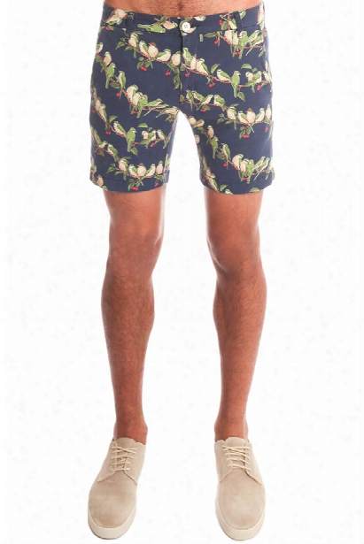 Remi Relief Bird Motif Shorts
