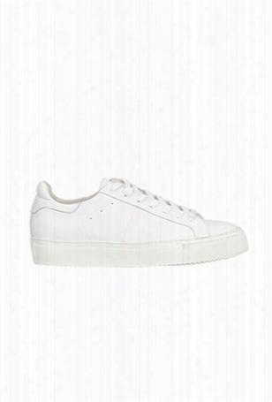 Iro Manoyia Sneaker