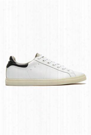 Iro Prissy Sneaker
