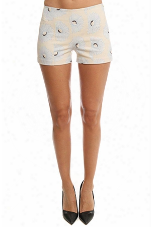 Suno High Waisted Short