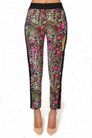 3.1 Phillip Lim Wild Things Floral Pants