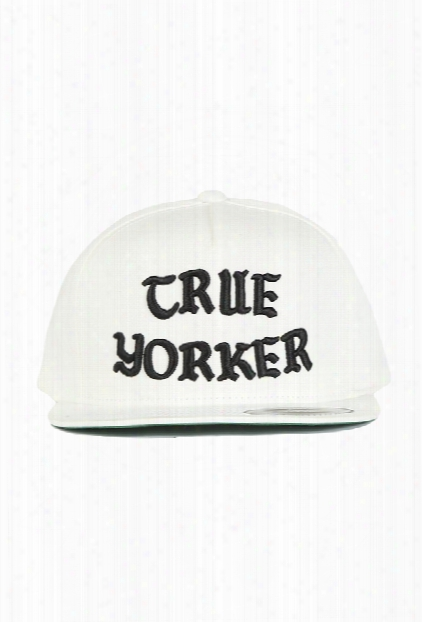 Blue&cream True Yorker Snapback