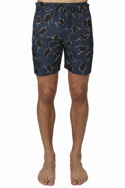 Outerknown Evolution Trunk