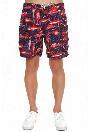 Burkman Bros Cargo Swim Short