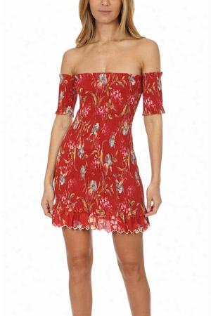 Zimmermann Corsair Shirred Flutter Dress
