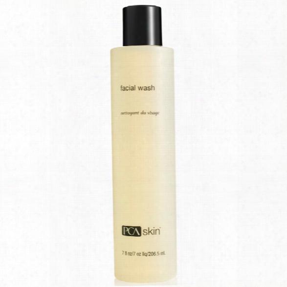 Pca Skin Facial Wash (phaze 1)