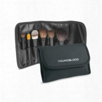 Youngblood Professional Mini Brush Set