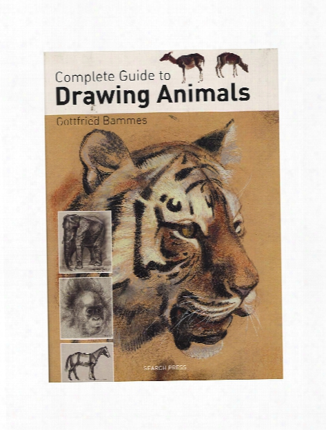 Complete Guide To Drawing Animals Each