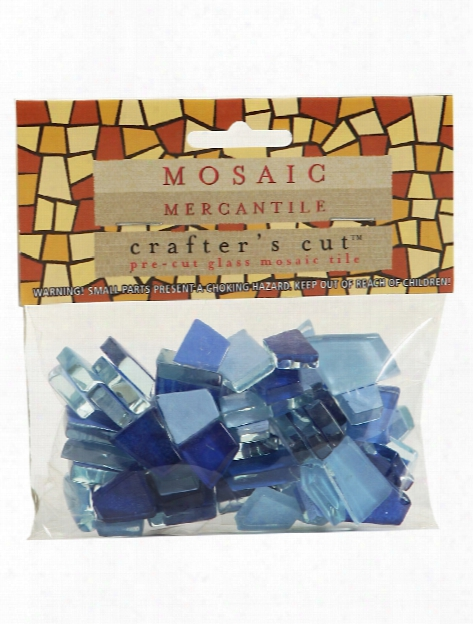 Crafter's Cut Solid Mosaic Tiles Wild Flower 1 3 Lb. Bag