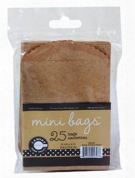 Mini Bags Kraft