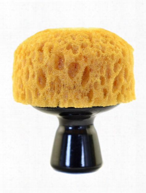 Mixed Media Tools Rough Stippling Brush 2 3 4 In.