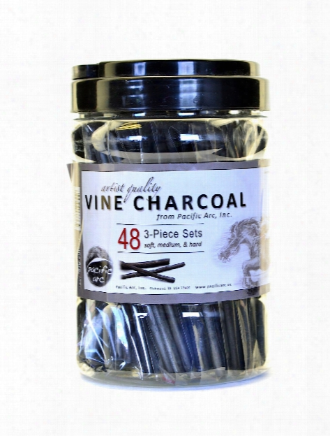 Vine Charcoal 3-piece Sets Canister Of 48