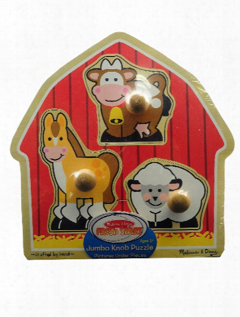 Wooden Jumbo Knob Puzzles First Shapes