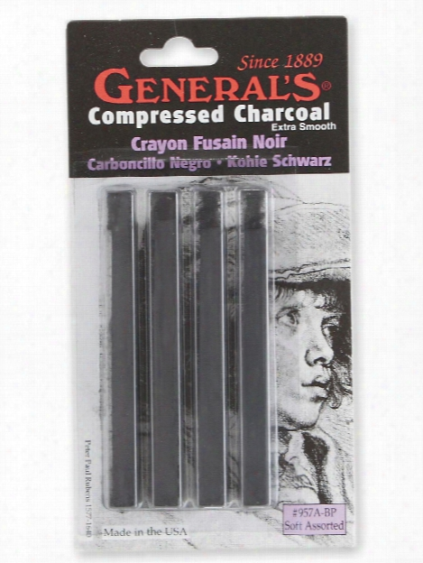 Compressed Charcoal Assorted Pack Of 4