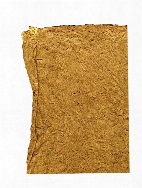 Lokta Vegetable Dye Paper Leather Walnut 20 In. X 30 In.