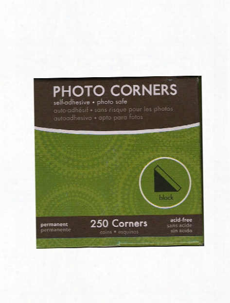 Photo Corners Black Box  Of 250