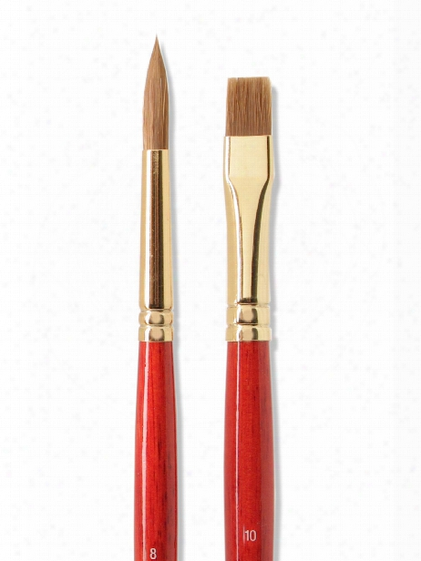 Sceptre Gold Ii Long Handled Brushes 10 Flat 505