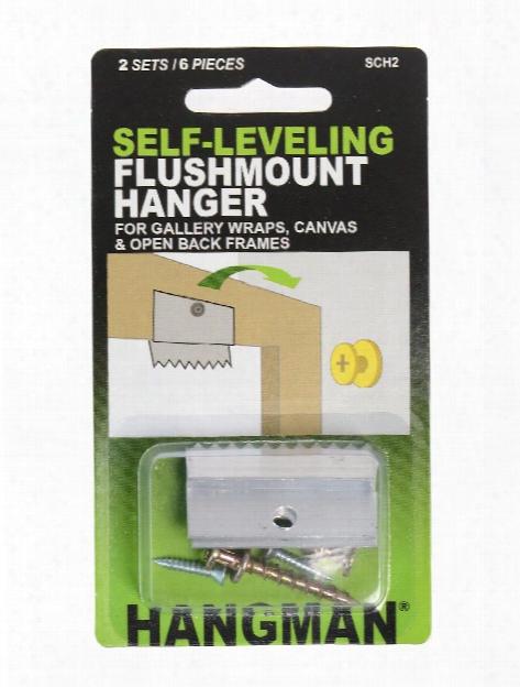 Selfleveling Flushmount Hanger Pack Of 2