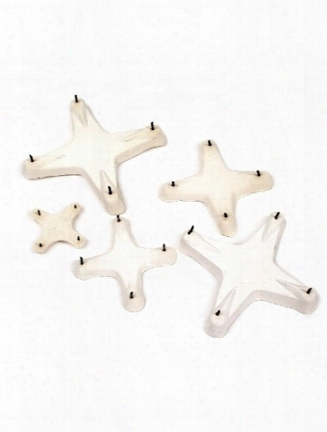 Star Stilts 2 1 2 In.