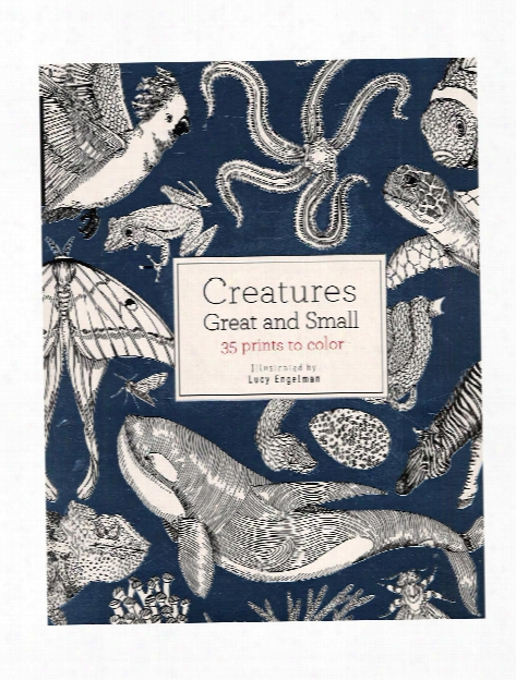 Field Guide: Creatures Great And Small Each
