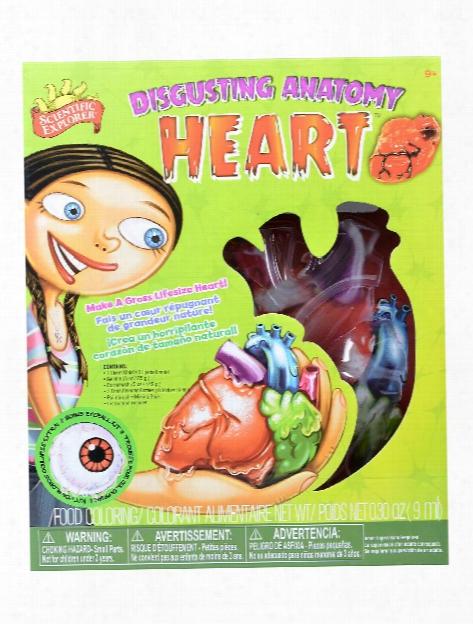 Disgusting Anatomy Heart Each