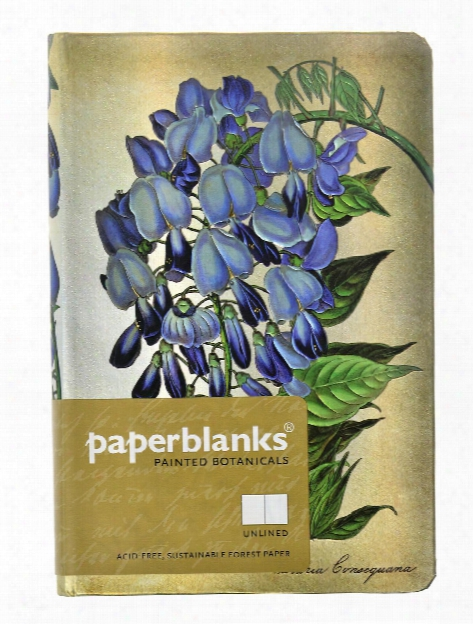 Painted Botanicals Blooming Wisteria Mini, 3 3 4 In. X 5 1 2 In. 176 Pages, Unlined