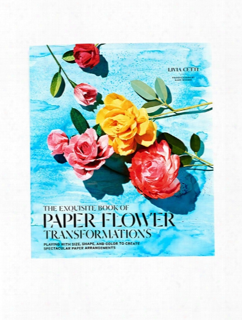 The Exquisite Book Of Paper Flower Transformation Each