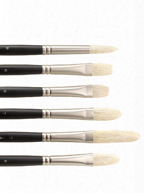 Artists' Oil Brushes 2 Flat