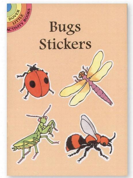Fun With Butterflies Stencils Fun With Butterflies Stencils