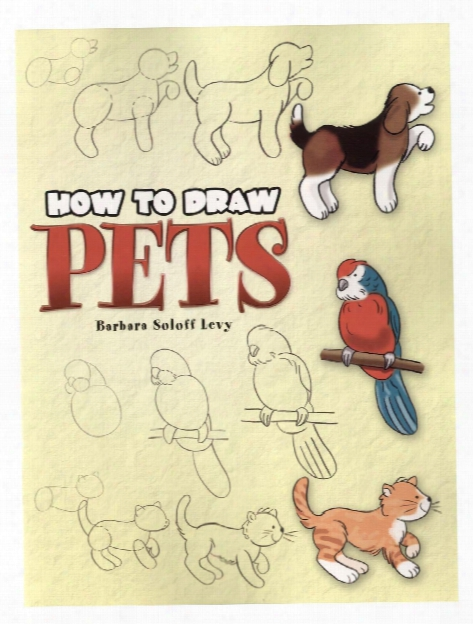 How To Draw Pets How To Draw Pets