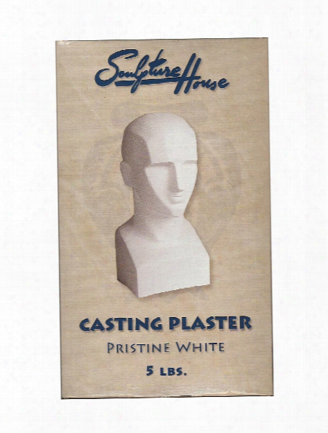 Pristine White Casting Plaster 5 Lb.