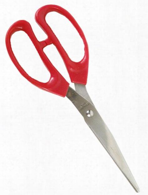 8 Inch Craft Scissors 8 In.