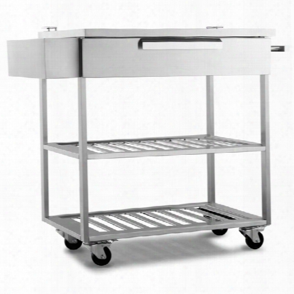 Newage Outdoor Kitchen Bar Cart In Stainless Steel Classic