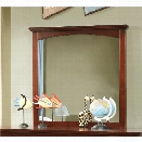 Furniture of America Hailey Transitional Mirror in Cherry