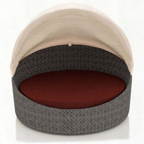 Harmonia Living Wink Canopy Patio Daybed In Canvas Henna