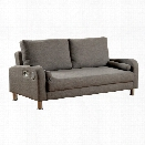 Furniture of America Chrissy Fabric Sleeper Sofa Bed in Gray