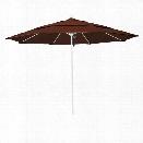 California Umbrella Venture 11' White Market Umbrella in Bay Brown