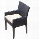 TKC Napa Wicker Patio Arm Dining Chairs in Beige (Set of 2)