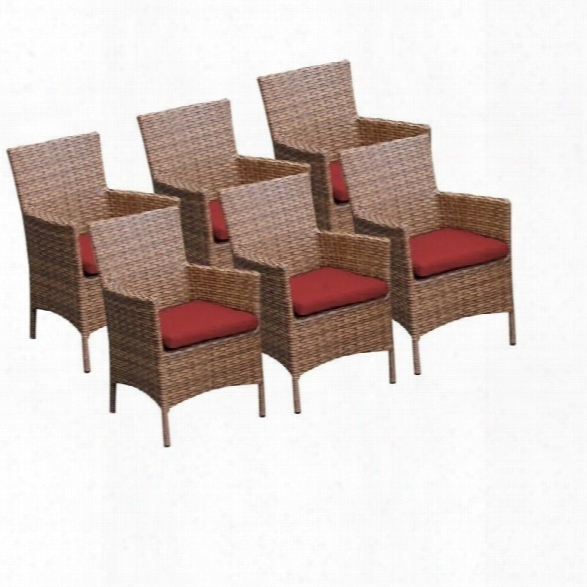 Tkc Laguna Wicker Patio Arm Dining Chairs In Terracotta (set Of 6)
