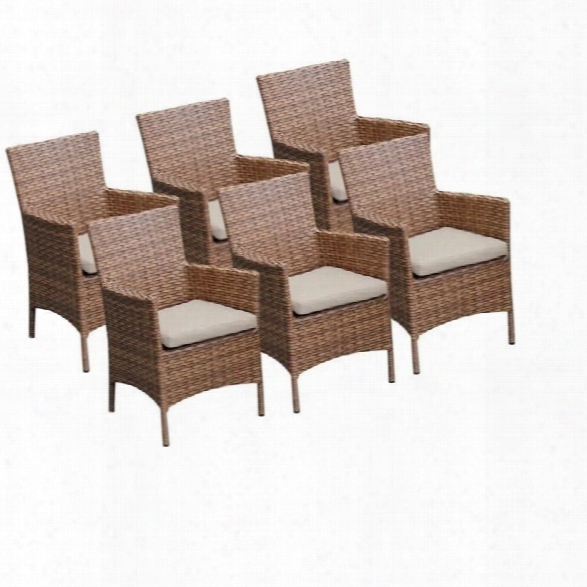 Tkc Laguna Wicker Patio Arm Dining Chairs In Beige (set Of 6)