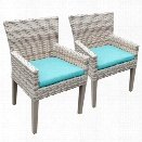 TKC Fairmont Patio Dining Arm Chair in Turquoise (Set of 2)