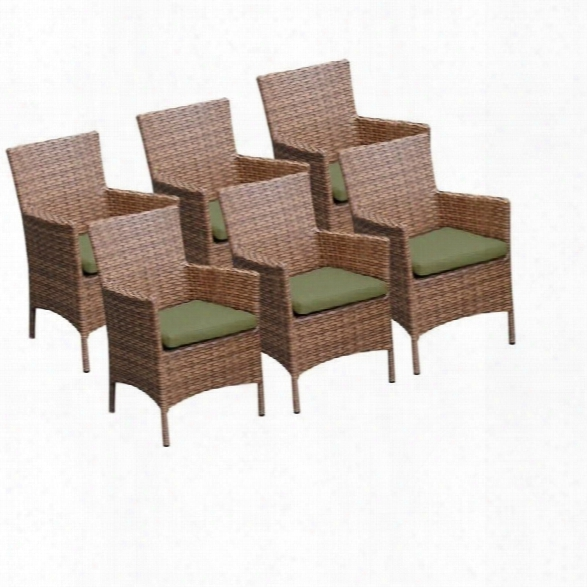 Tkc Laguna Wicker Patio Arm Dining Chairs In Cilantro (set Of 6)