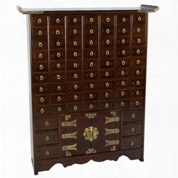 Oriental Korean 63 Drawer Apothecary Accent Chest In Rosewood