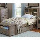 NE Kids Highlands Twin Bookcase Storage Bed in Driftwood