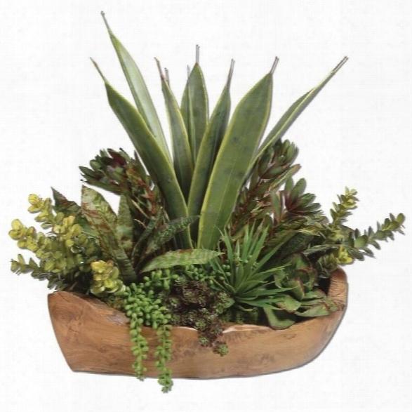 Uttermos T Salar Succulents In Teak Bowl