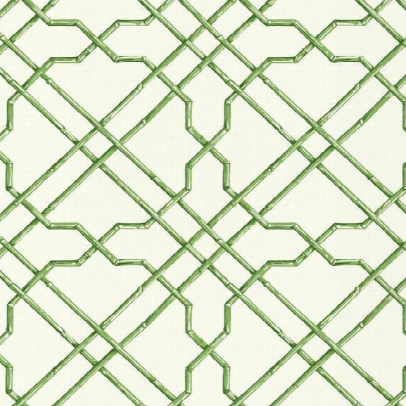Bamboo Trellis Wallpaper In Green Design By York Wallcoverings